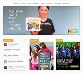 NECS Website