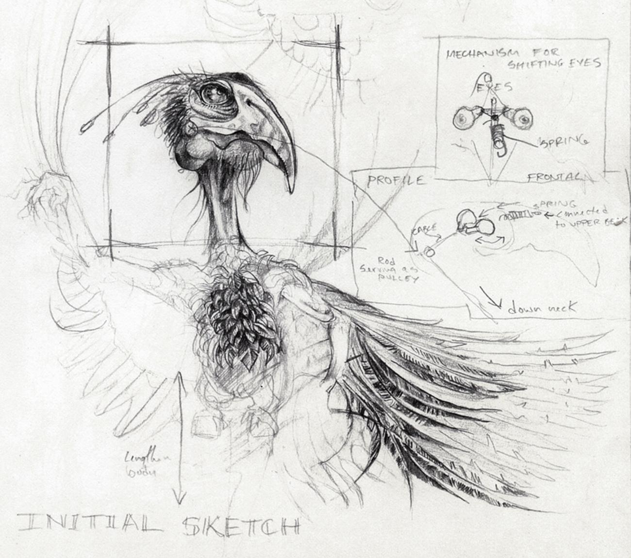 Bird Sketch with Diagrams - Andreas Engel Creative